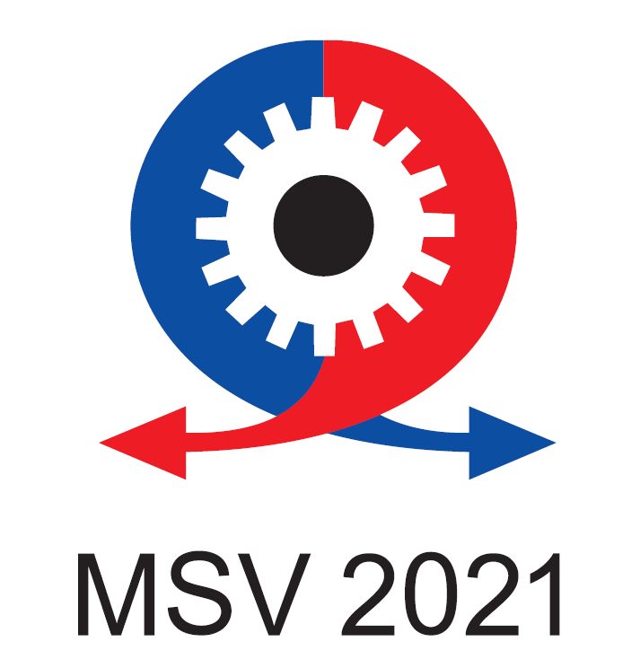 msv2021.PNG